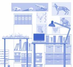 Extrait d'une illustration murale pour le labo du CIP de Dehlingen. Illustration vectorielle Batchou.