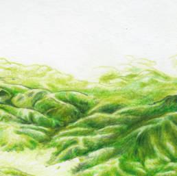 Détails de la carte Nature 2000 de la vallée de la Bruche